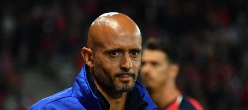 Miguel Cardoso, l'entraîneur du FC Nantes