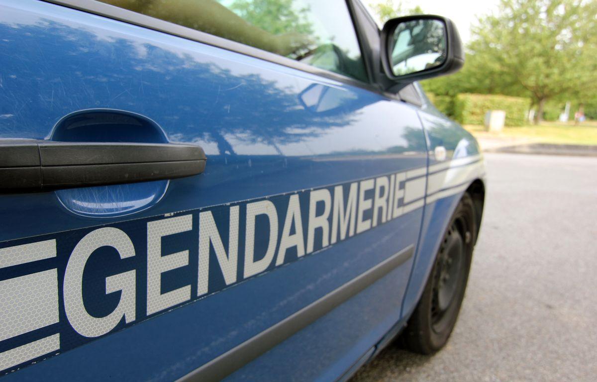 Illustration d'une voiture de gendarmerie. – C. Allain / APEI / 20 Minutes