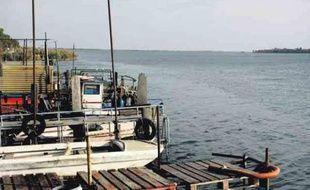 Des habitants de Port-Saint-Louis-du-Rhône ont participé à l'étude de l'Asep et du WWF.