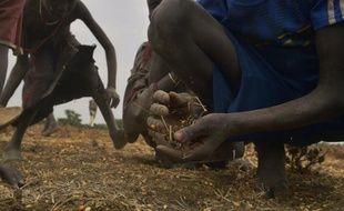 Des enfants ramassent des graines tombées d'un sac après une distribution d'aide alimentaire dans le village de Nyal, au Soudan du Sud, le 24 février 2015