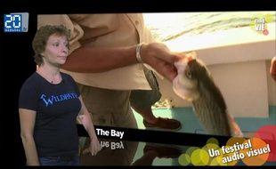 Caroline Vié présente sa chronique de cinéma sur le film « The Bay»