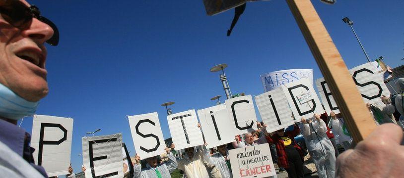 Lors d'une manifestation d'opposants ecologistes a l'utilisation des pesticides devant un hypermarche de la region de Toulouse.