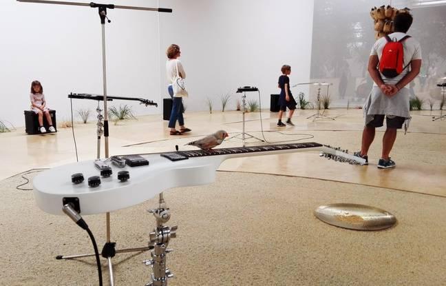 L'exposition «Fluides» de Céleste Boursier à la Hab Galerie sur l'île de Nantes.