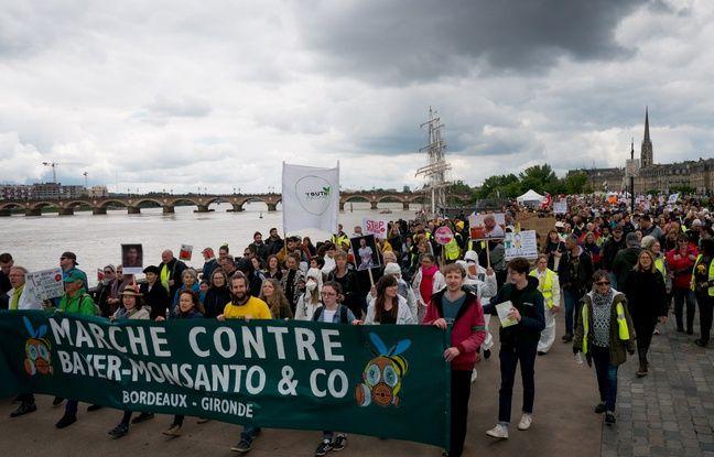 Bordeaux: Les anti-Monsanto et les «gilets jaunes» ont défilé ensemble samedi