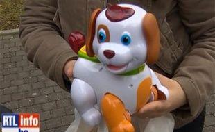 Capture d'écran d'un reportage de RTL Info sur Bobby, un chien en plastique qui fait scandale en Belgique.