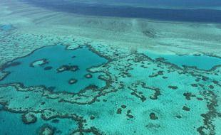 La Grande Barrière de Corail a déjà connu plusieurs épisodes de blanchissement.