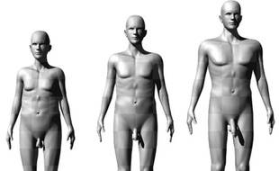 Les silhouettes présentées à des femmes par des scientifiques australiens pour évaluer leur attrait sexuel.