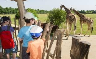 Des enfants au zoo de la Boissière du Doré, près de Nantes