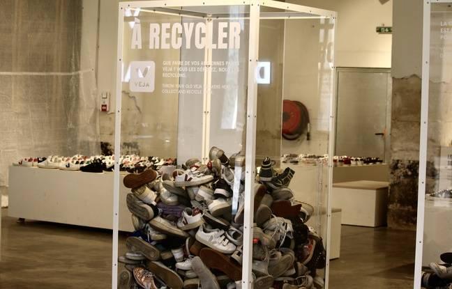 Des bacs sont installés dans le magasin Veja de Darwin, pour déposes ses sneakers usagées, qui seront ensuite recyclées.