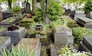 Dans les cimetières, la vie végétale et animale reprend le