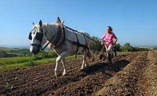 Quand la plupart des paysans sont juchés sur de puissants tracteurs, certains agriculteurs ont choisi de revenir à l'âne ou au cheval pour cultiver leurs champs. Loin d'être archaïque, disent-ils, la traction animale est un outil moderne et dans l'air du temps.