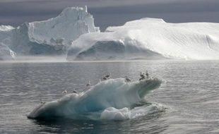 """Des scientifiques ont tiré lundi la sonnette d'alarme sur l'acidification """"rapide"""" de l'océan Arctique due aux émissions de CO2, un phénomène lourd de menaces pour le fragile écosystème de la région."""