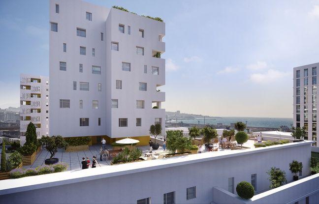 Panier de légumes, tablette et thalassothermie... L'écoquartier des quartiers nord de Marseille qui intéresse l'Etat