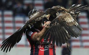 L'aigle de l'OGC Nice, devenu la mascotte du club, le 18 décembre 2013, à l'Allianz-Riviera.