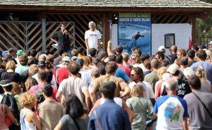 """Environ 300 surfeurs se sont rassemblés dimanche à la Réunion pour apporter leur soutien à leur camarade grièvement blessé par un requin il y a une semaine et réclamer une protection contre """"le danger qui vient du large"""", afin que """"le carnage cesse""""."""
