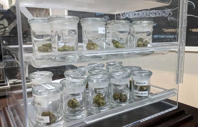 Du cannabis vendu par le dispensaire River City Phoenix, à Sacramento, le 1er janvier 2017.