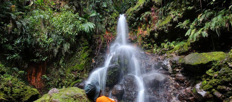 Le paradis se mérite ! Sur Basse-Terre, la cascade Parabole ne s'offre qu'aux courageux capables de braver les pièges de la forêt tropicale.