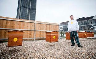 Philippe Prat, apiculteur, et les ruches installées sur la tour Montparnasse le 22 mai 2012.