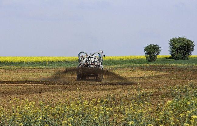 Bretagne: Comment l'agriculture tente de limiter ses émissions d'ammoniac et (donc sa pollution)