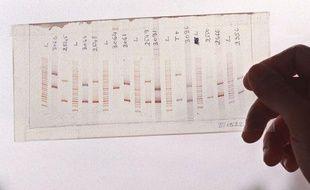Illustration carte du génome humain.