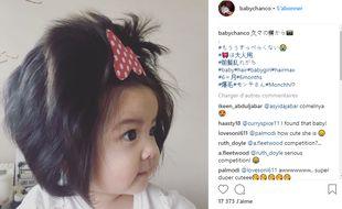 « Baby Chanco » fait le bonheur des internautes sur Instagram.