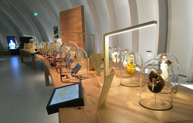 L'atelier odorat de la Cité du Vin