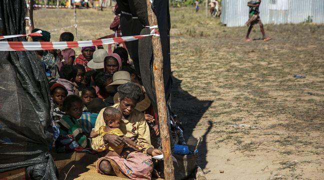 Madagascar : Plus d'un million de personnes frappées par la famine dans le sud du pays