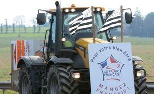Un agriculteur manifeste à Torce, près de Rennes, pour exiger des mesures face à la crise du secteur, le 17 février 2016