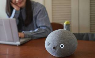 Un robot chat pour aider les personnes isolées par la pandémie