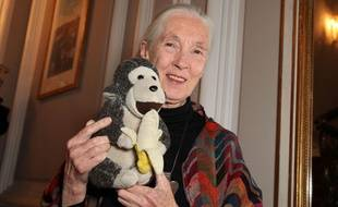 Jane Goodall en 2011.