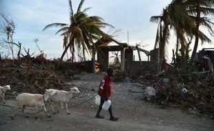 Haïti a été ravagé par l'ouragan Matthew