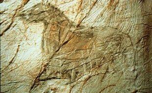 Un des chevaux de la grotte Cosquer