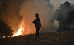 Un sapeur pompier qui a combattu le feu dans la région de Gois, au Portugal, le 20 juin 2017. L'incendie a fait 64 morts et plus de 250 blessés