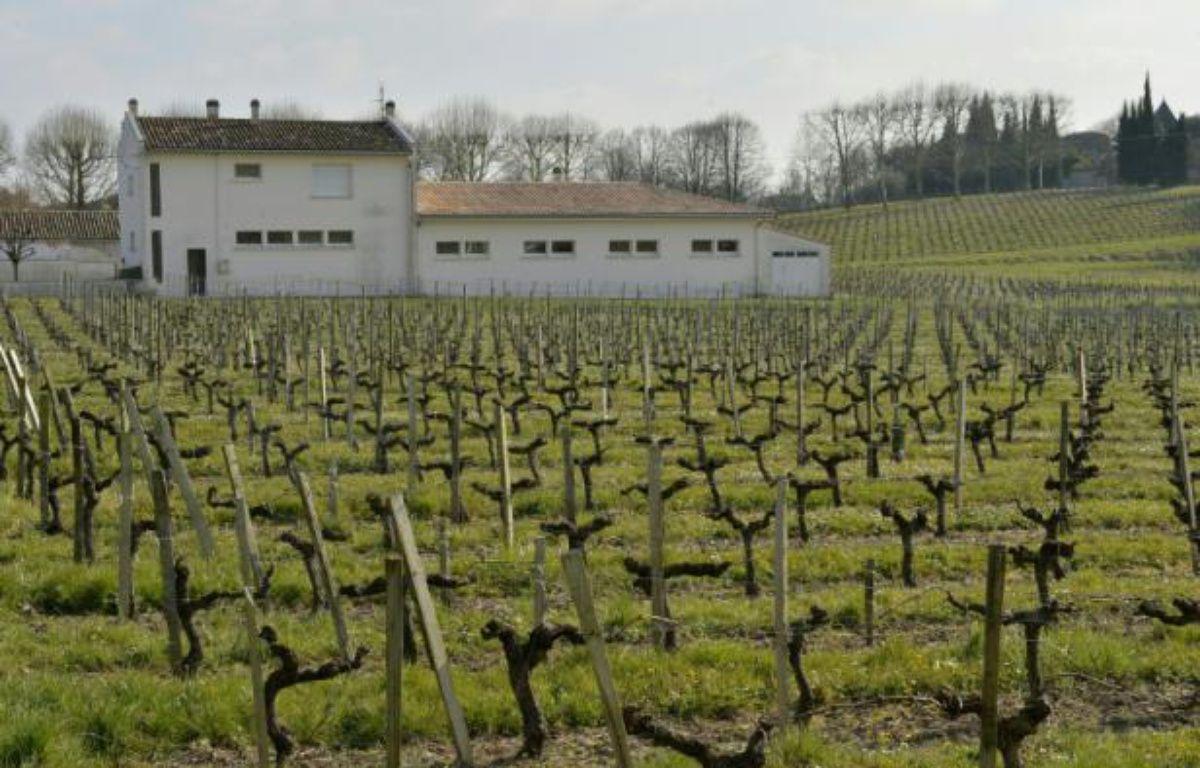 L'école élémentaire de Villeneuve-de-Blaye près de Bordeaux le 23 mars 2016, où élèves et professeurs souffrent de pathologies liées à l'utilisation de produits phytosanitaires dans les vignes alentour – GEORGES GOBET AFP