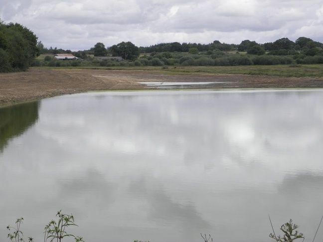 Un étangs à moitié vide.