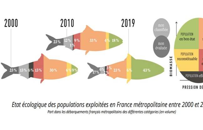 / Infographie Ifremer