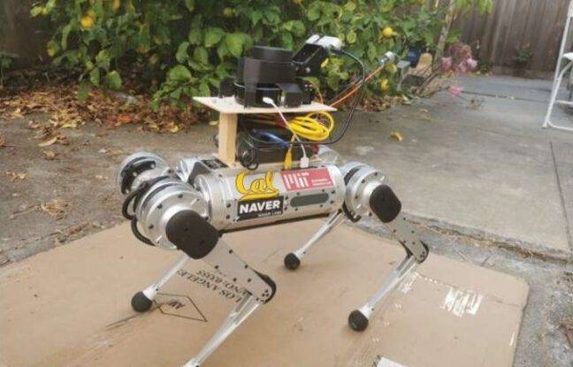 Des chercheurs mettent au point un robot-guide pour les personnes mal voyantes