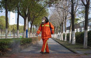 28 janvier 2020, un homme vaporise un désinfectant le long d'un chemin à Wuhan, dans la province du Hubei en Chine centrale.