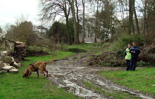 """FRANCE, Ribécourt-Dreslincourt : This handout photograph released by the French Gendarmerie of Compeigne shows gendarmes using a Saint-Hubert dog to search for missing teen Bruno Dovergne on December 26, 2012 near Ribecourt-Dreslincourt one week after the Down Syndrome affected 17 year old disappeared from the Compiegne region. ---EDITORS NOTE---HANDOUT RESTRICTED TO EDITORIAL USE - MANDATORY CREDIT """"AFP PHOTO / Gendarmerie de Compiegne """" - NO MARKETING NO ADVERTISING CAMPAIGNS - DISTRIBUTED AS A SERVICE TO CLIENTS - AFP PHOTO / Gendarmerie de Compiegne"""