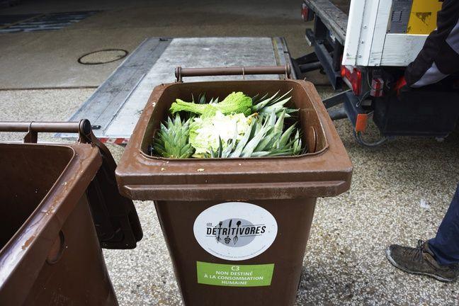 Un habitant génère entre 100 et 150 kilos de biodéchets par an.