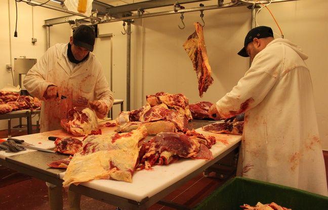 La découpe de la viande à l'abattoir d'Autun, le 7 mars 2016.
