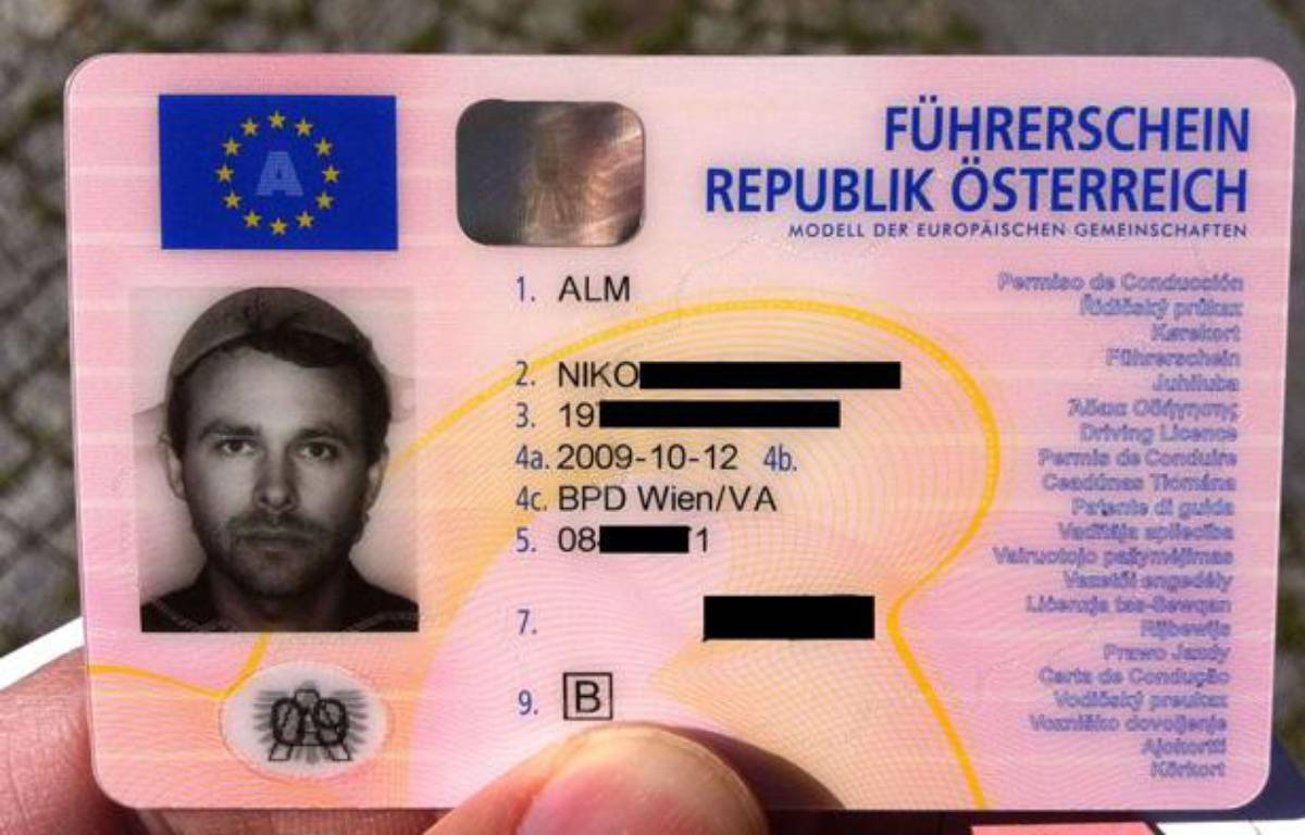 Le permis de conduire de Niko Alm, coiffé d'une passoire. – (c) Niko Alm / Rex Feat/REX/SIPA