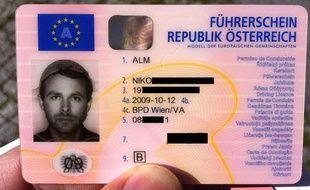 Le permis de conduire de Niko Alm, coiffé d'une passoire.
