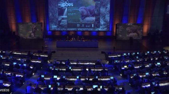 ONU : Assaillis par les cataclysmes, 195 pays se penchent sur les prévisions climatiques