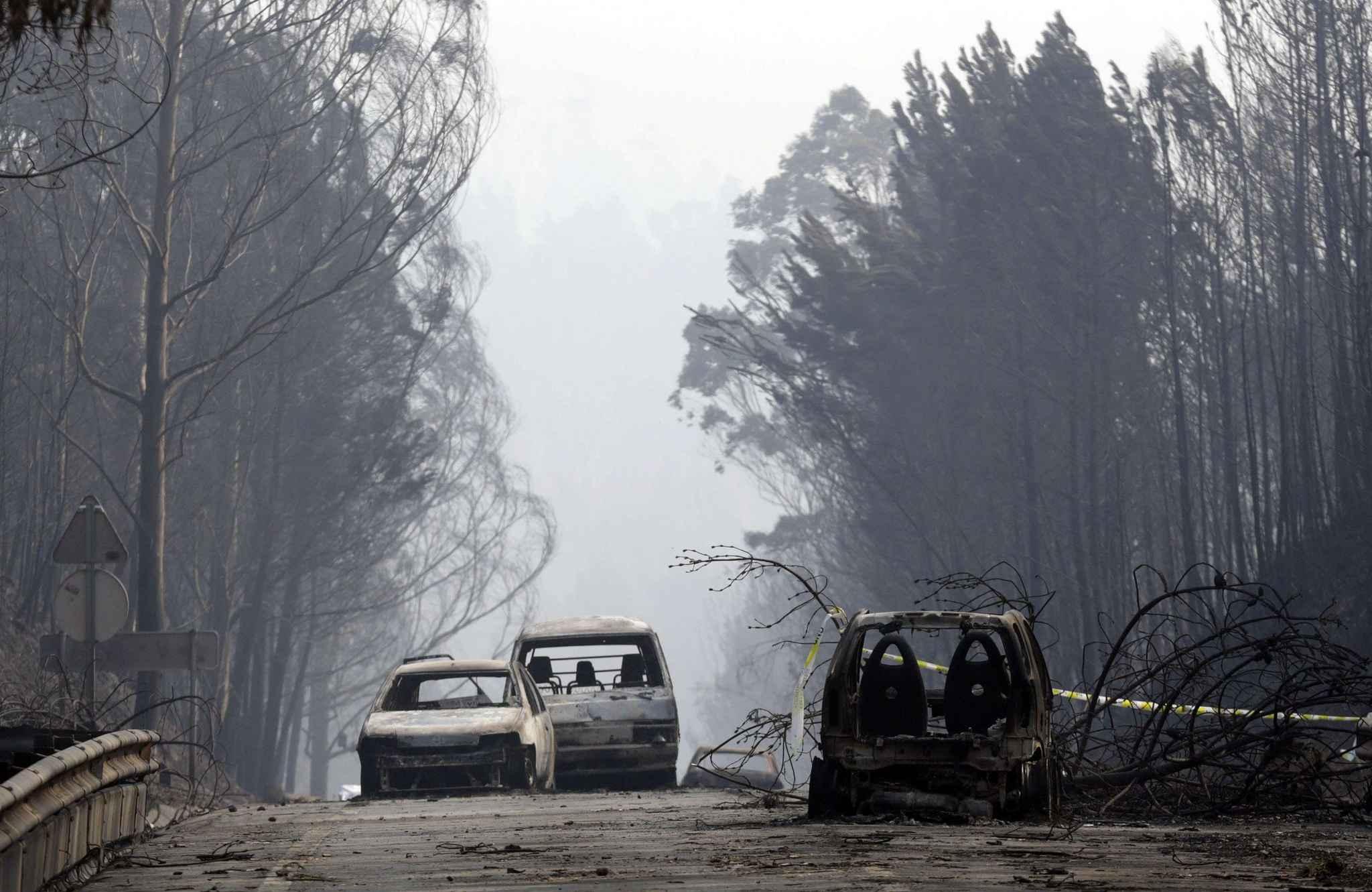 Portugal: trois jours de deuil national après l'incendie de forêt meurtrier