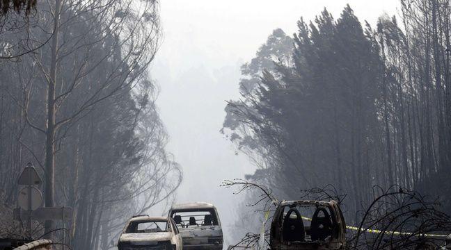 Le gigantesque feu de forêt qui a fait rage le 17 juin 2017 dans la région de Leiria, dans le centre du Portugal a fait au moins 62 morts. – Armando Franca/AP/SIPA