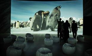 L'exposition Antarctica de Luc Jacquet présente les photos de Laurent Ballesta et Vincent Munier   AFP PHOTO : JEFF PACHOUD.