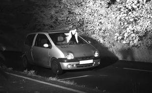 Un automobiliste allemand a été flashé en même temps qu'une colombe, à Viersen.