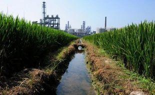 Environ un dixième des terres cultivées en Chine sont polluées par des métaux lourds, selon une enquête officielle rapportée lundi par la presse chinoise, alors que les manifestations d'habitants inquiets pour leur santé se sont multipliées cette année.