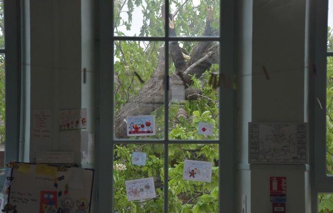 Chute d'un arbre dans une cour d'école: Une cagnotte lancée pour les familles des victimes de Bessens